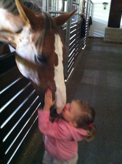 Im Stall von Max Kühner ist die Liebe zu Pferden schon bei den Kleinsten ganz groß. © Alexandra Stork