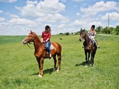 Ausritte von max. fünf Pferd-Reiter-Paaren sollen mit ausreichendem Sicherheitsabstand ab 1. Mai wieder gestattet sein. © Adobe Stock