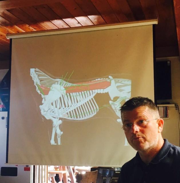 Michael Estermann gab Einblicke in die Biomachanik der Pferde. © Mevisto Equestrian Excellence