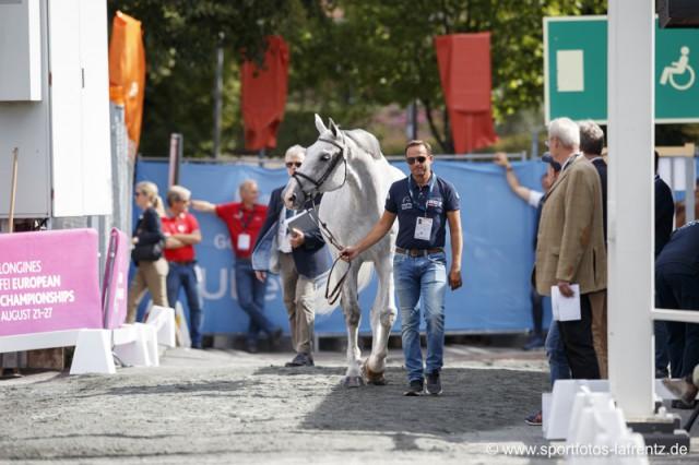 Roland Englbrecht wird Chamberry bei diesen Europameisterschaften in Göteborg reiten. © Stefan Lafrentz