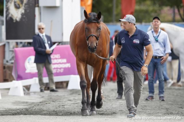 Christoph Obernauer ist mit Kleons Absinth der österreichische Ersatzmann. © Stefan Lafrentz