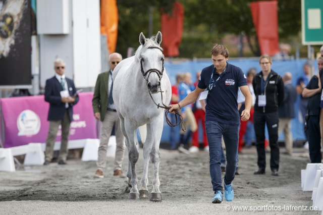 Christian Rhomberg mit seinem Championatspferd Saphyr des Lacs. © Stefan Lafrentz