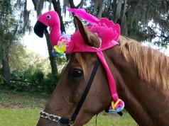 Voll im Flamingotrend - oder etwa nicht? © etsy.com