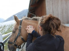 """""""A Massage at the start of your horses break will only benefit him!"""" © Adrienne Tomkinson"""