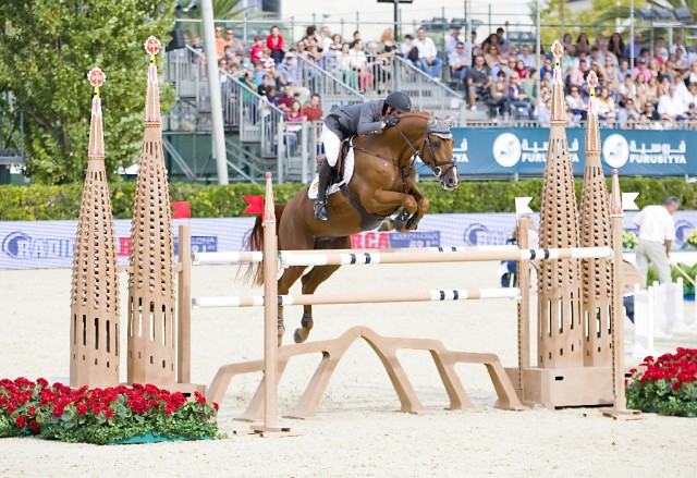 Besonders in Teambewerben ist es im Pferdesport wichtig, auf gute Teams vertrauen zu können. © Shutterstock | Natursports