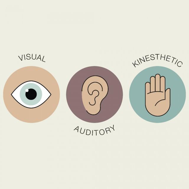 Ob jemand visuell, kinesthätisch oder auditiv am besten Informationen aufnimmt entscheidet sich in der Entwicklung sehr früh. © Shutterstock | Jeremyah