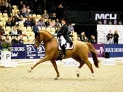 Catherine Dufour (DEN) und Atterupgaards Cassidy. © FEI / horsephoto.com