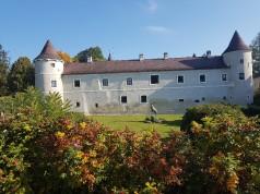 Schloss Waldreichs im Waldviertel (NÖ) bildete die wunderschöne Kulisse für den Naturdialog des NÖ Pferdesportverbandes. © EQWO.net