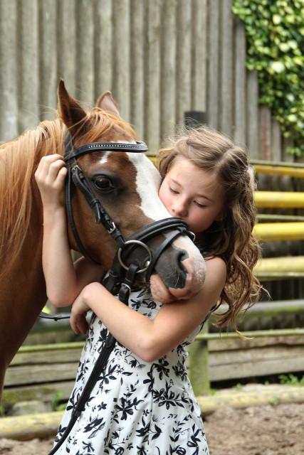Als Reiter lernst du, deine Emotionen ständig zu kontrollieren und gewinnst zunehmend mentale Stärke © pixabay  uki_71