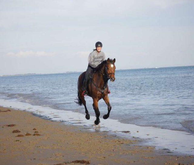 Ende Oktober ging es für Hannah Traussnig und ihr Pferd nach Lignano! © Hannah Traussnig