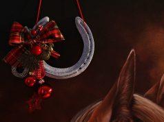 Das Team von EQUESTRIAN WORLDWIDE - EQWO.net wünscht Frohe Weihnachten!
