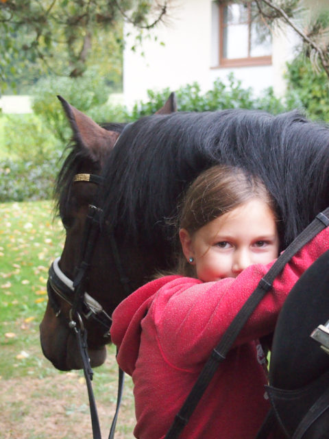 """""""Jugend und Pferd"""" lautet der Titel des ersten Vortragsblocks. © Höhere Bundeslehr- und Forschungsanstalt Raumberg-Gumpenstein"""