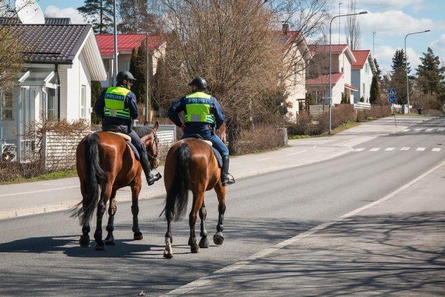Tierschützer sind empört über den Vorschlag einer berittenen Polizei in Wien. © pixabay