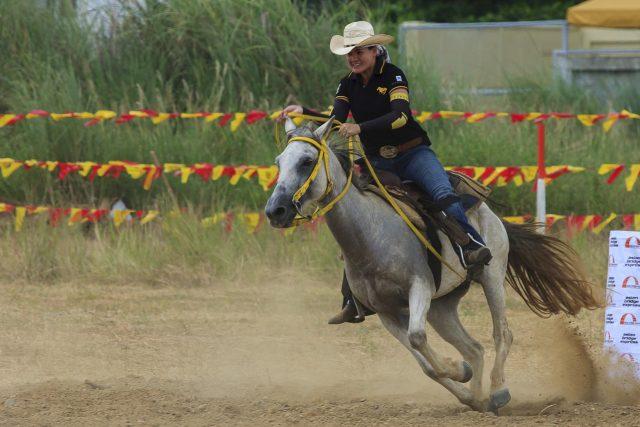 Deine Knotenpunkte helfen dir in jeder Disziplin des Pferdesports © Pixabay | Depaulus