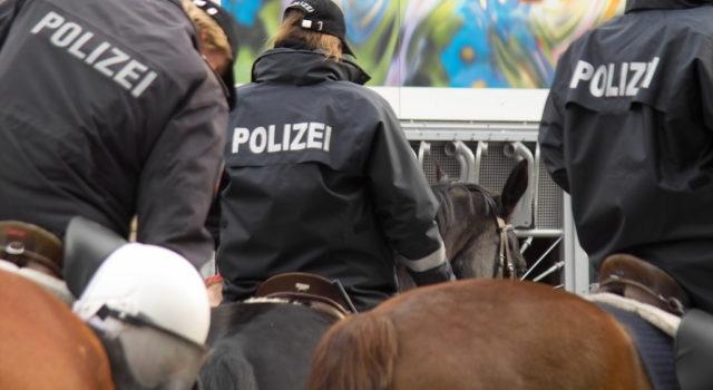 Bereits im Sommer 2017 soll mit der Auswahl von Polizeipferden für Wien begonnen werden. © AdobeStock