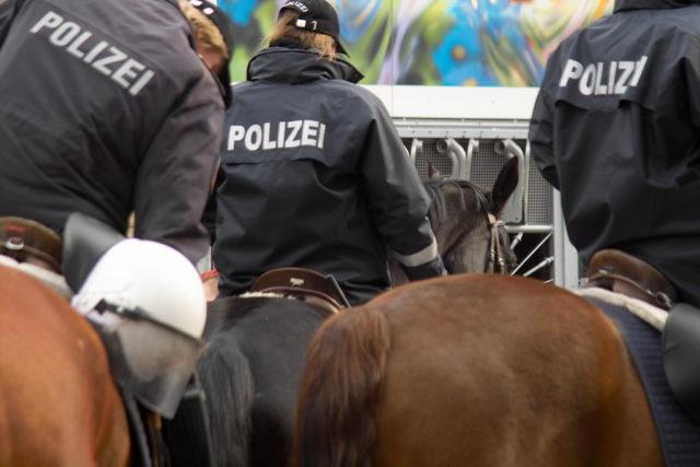 Die österreichische Pferdestaffel ist fix finanziert. © AdobeStock