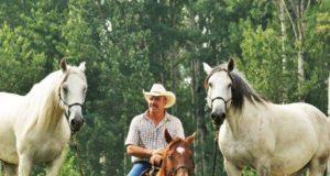 Glenn Stewarts Kurse sind für Englisch- und Westernreiter, Freizeit- und Turnierreiter geeignet! © hr
