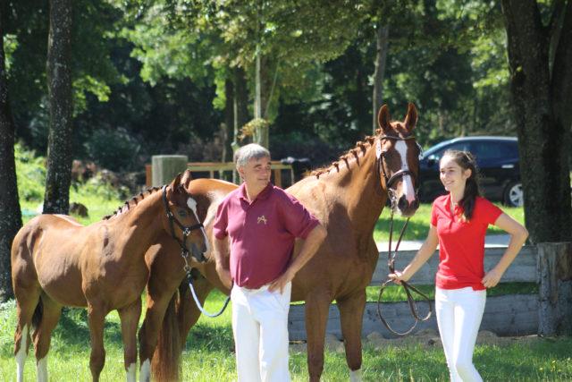 Jazz mit Fohlen Paulinjo Blue (n. Plot Blue, geb. 2017), dem Reserve-Sieger des OÖ Fohlenchampionats der springbetonten Pferde. © Großholzner Pferdezucht