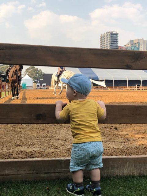 Während Papa trainiert, schaut Sohnemann Oscar zu. © Resi Rochelt