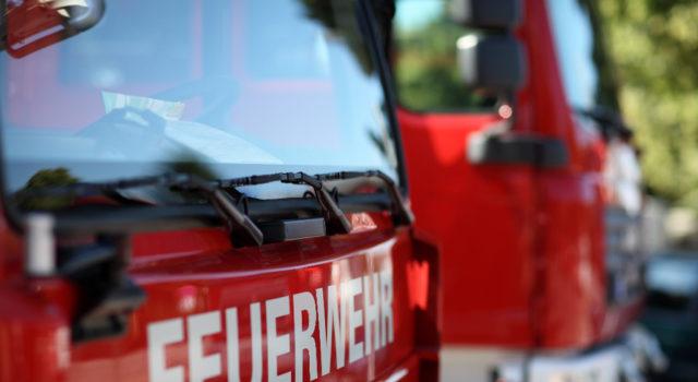 Symbolbild: Die Feuerwehr Leipzig konnte das Pferd mittels Drehleiter vom Balkon herunterholen. © Adobe Stock