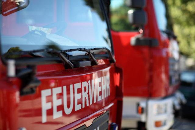 Symbolbild: Die Feuerwehr konnte das Pferd aus der Jauchegrube holen, es musste jedoch eingeschläfert werden. © Adobe Stock