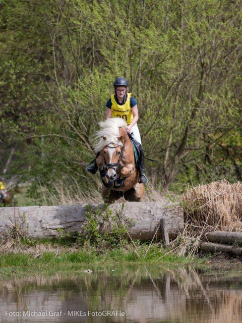 Im Rahmen des nationalen Vielseitigkeitsturnieres in Aspang (NÖ) starteten Österreichs Buschreiter in die Saison. © Michael Graf