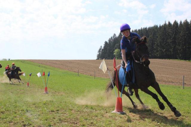 Bei den Mounted Games ist Geschick gefragt! © Ponyhof Daneder
