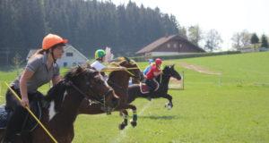 Der Spaß bei den Mounted Games kommt nicht zu kurz! © Ponyhof Daneder