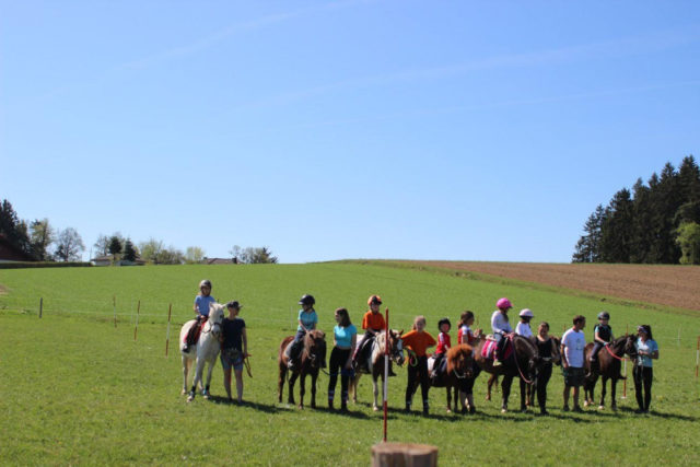 Traumhaftes Wetter beim Frühlingstreffen Mounted Games am Ponyhof Daneder. © Ponyhof Daneder