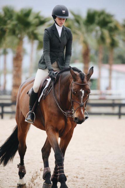 Sorge dich um deinen Partner Pferd, so arbeitest du täglich an eurer Verbindung ©pexels