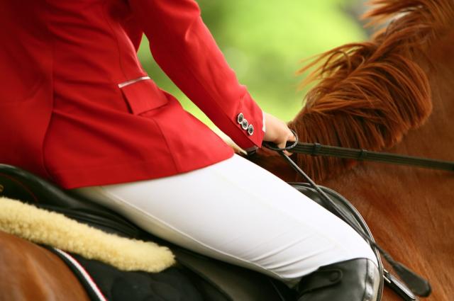 Während du im Sattel deines Pferdes sitzt, sollten deine Gedanken auch auf deinen Sportpartner gerichtet sein. ©pixabay