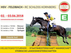 Traditionellerweise veranstaltet der HSV Feldbach RC Schloss Kornberg auch heuer wieder am 2. und 3. Juni 2018 ein Buschturnier mit vielen Highlights!