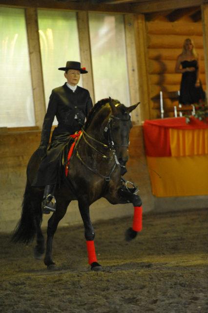 """Am 8. und am 10. Juni öffnet Geigers Reithaus in Schweighofen wieder seine Tore für die Benefiz-Veranstaltung """"Pferd in Konzert"""" des Vereins für Kunst, Wohltätigkeit, Kultur Schweighofen e.V."""