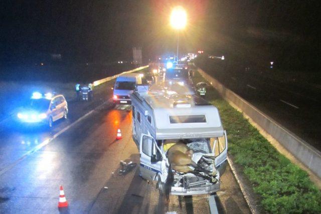Der Beifahrer des Wohnmobils wurde schwer verletzt, drei Pferde starben. © FF Golling