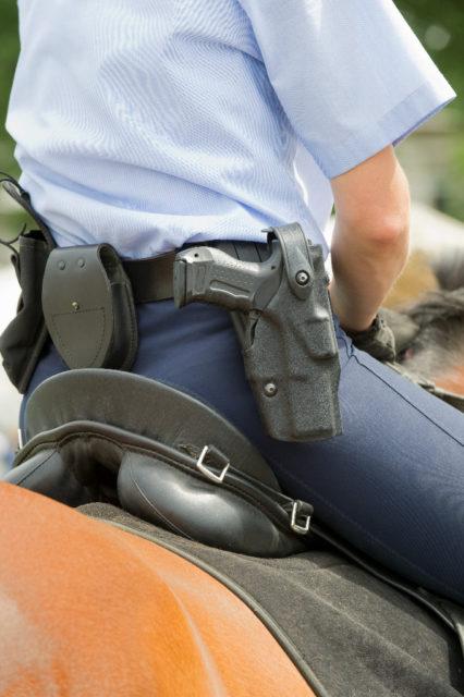 Die Militärakademie Wr. Neustadt soll Standort für die Reiterstaffel der Polizei werden. © Adobe Stock