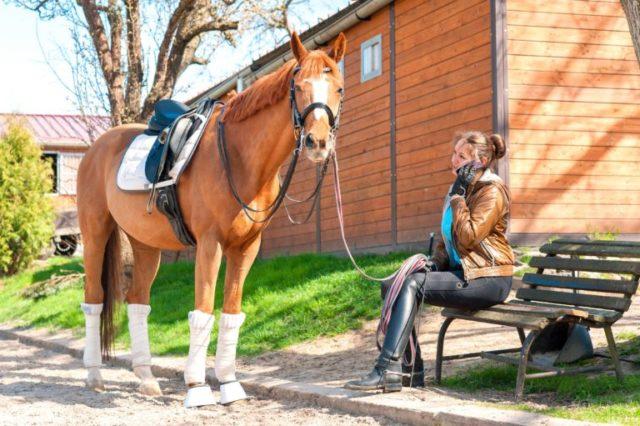 Was denkt dein Pferd wohl in diesem Moment von dir und deinem rechteckigen Freund? © Adobestock