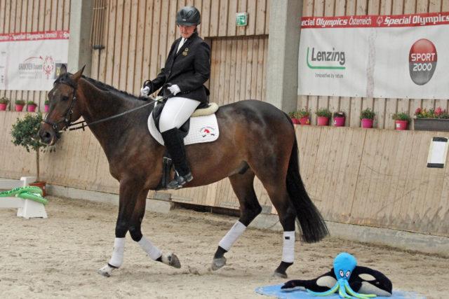 Da hieß es Nerven bewahren - für Pferd und Reiter! © Susanne Müller