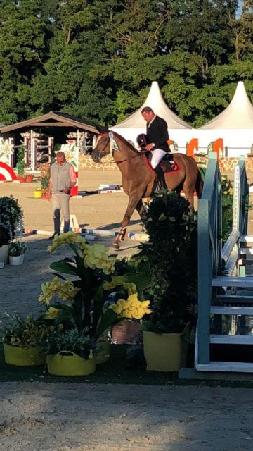 Matthias Raisch sammelte mit seinen Pferden fleissig Platzierungsschleifen während der zweiwöchigen Sommertour in der Lake Arena. © privat