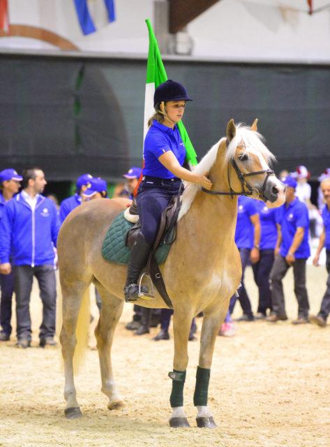 Insgesamt werden 99 Reiter und 25 Gespanne Österreich in Stadl Paura beim Haflinger Europachampionat vertreten. © Haflinger Europachampionat 2018