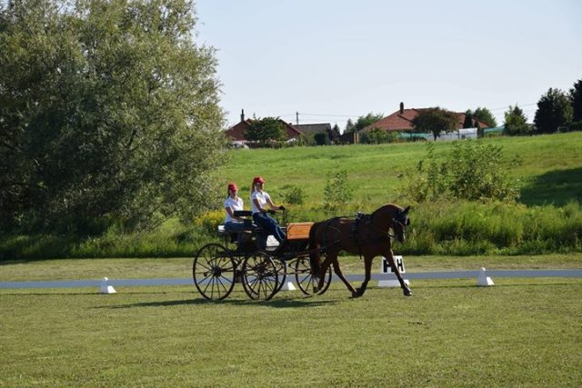 Impressionen vom ersten Training von Team Austria bei der Nachwuchs EM in Kisbér-Ászár (HUN). © privat