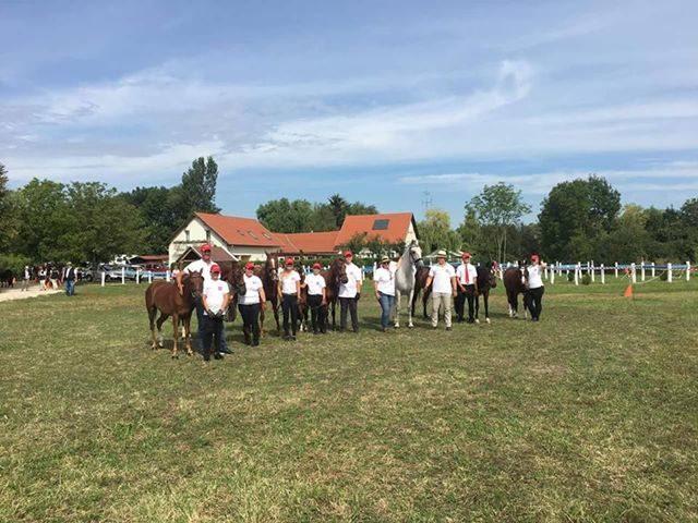 Team Austria beim Vet Check. © equifocus- Ann Kathrin Drumm