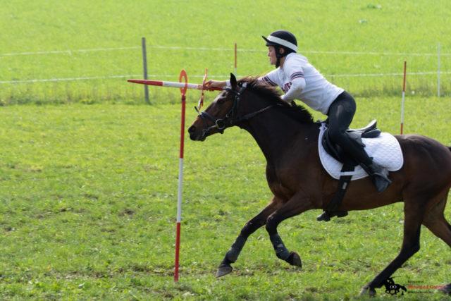 Jana Kiesenhofer auf Aldensfarm Breaking Dawn - Team Ponyhof Daneder 1 - OÖ Meister und Ö Vizemeister. © mountedgames.at