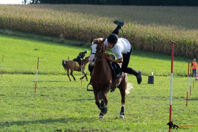 Marvin Lorenz auf Fantaghiro - Team Ponyhof Daneder 1 - OÖ Meister und Ö Vizemeister. © mountedgames.at