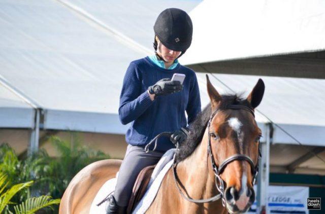 Dein Pferd kann der Insta-Story die du gerade machst nicht viel abgewinnen. © horsejunkiesunited.com
