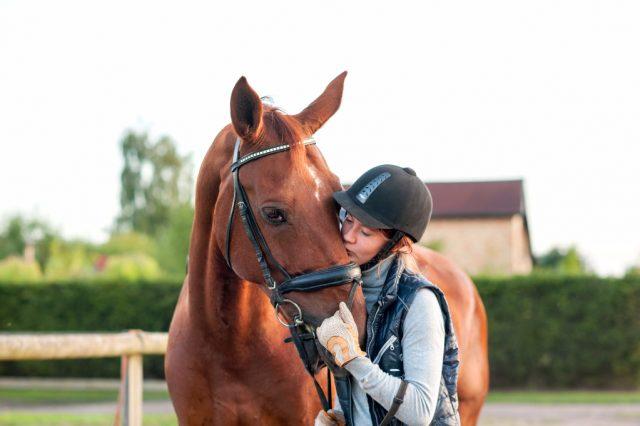 Verwöhne dein Pferd mit Zeit! © Shutterstock / Anna Elizabeth Photography