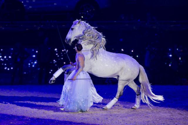 Pferde, Hunde, Messe, Show - bei der Amadeus Horse Indoors gibt es vier Tage lang ein zauberhaftes Programm. © Michael Graf