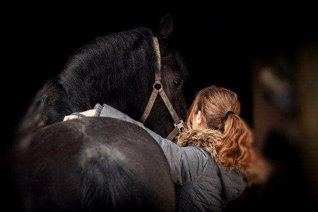 Dein Pferd wird sich über eine Massage freue. © Simon Wackerle
