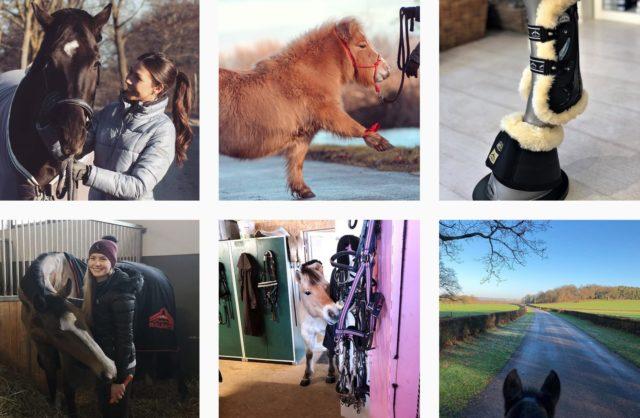 Der Hashtag Equestrian zählt mehr als sieben Millionen Beiträge © Instagram