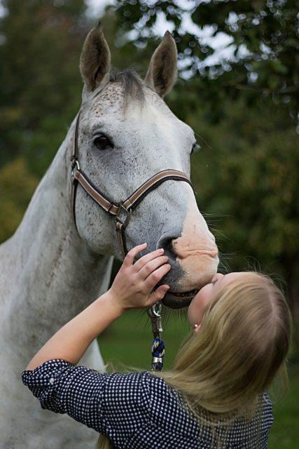 Unseren Pferden mit positiven Emotionen zu begegnen sind wir den Vierbeinern schuldig. © pixabay