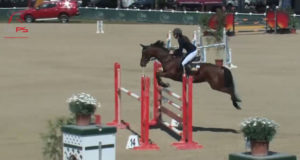 Mit der einzigen Nullrunde ging der Happy Horse Pony Grand Prix im Magna Racino verdient an Ludovica Goess-Saura und ihr Pony Valmy De Treille. privat